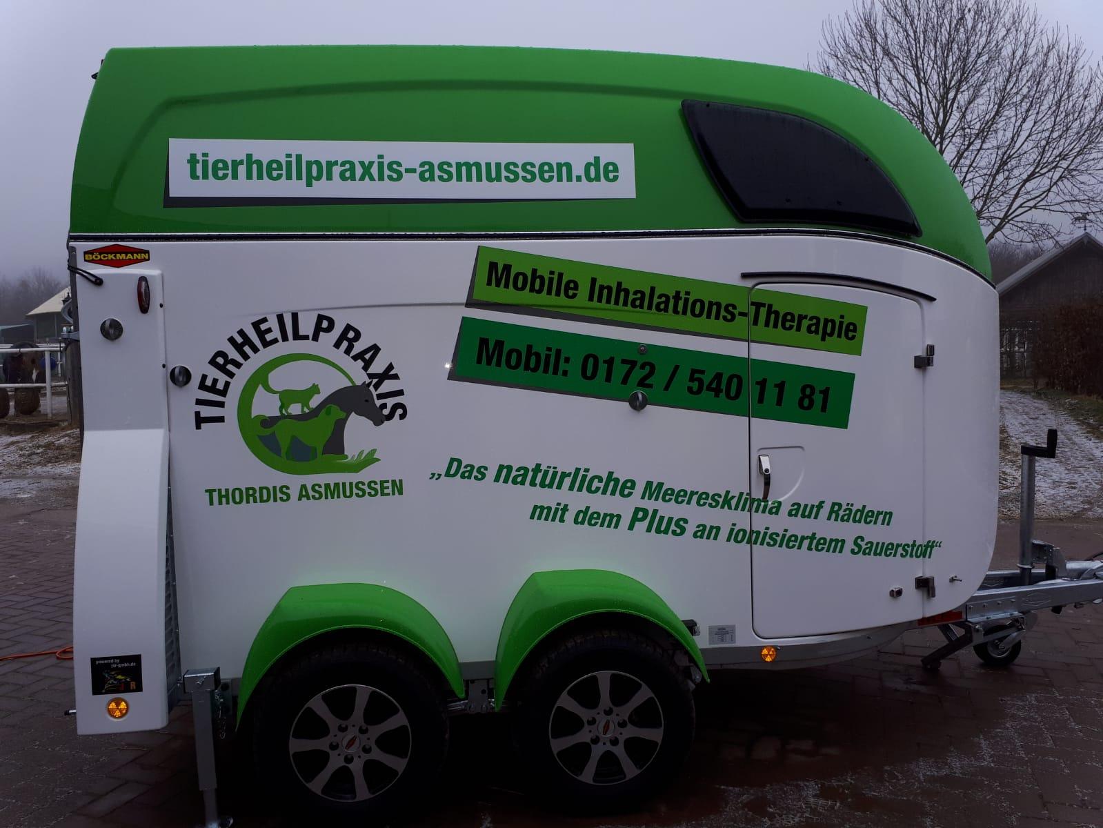 Pferdeinhalation-Kundenbild Thordis Asmussen Big Master
