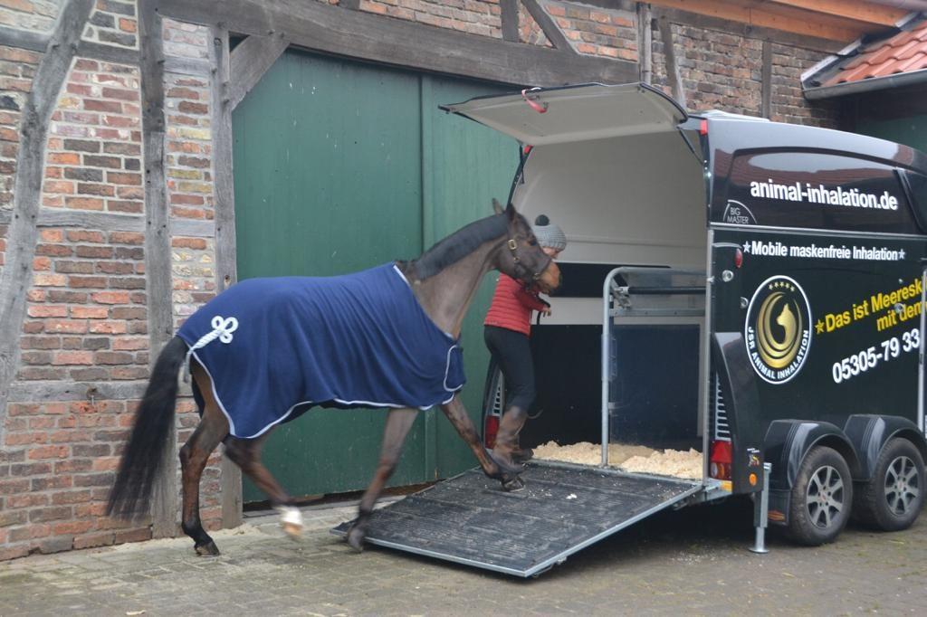 Sophie Leube nutzt Soleinhalation von Animal Inhalation für ihr Pferd
