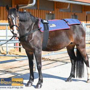 equimag_compact_Magnetfelddecke Pferd