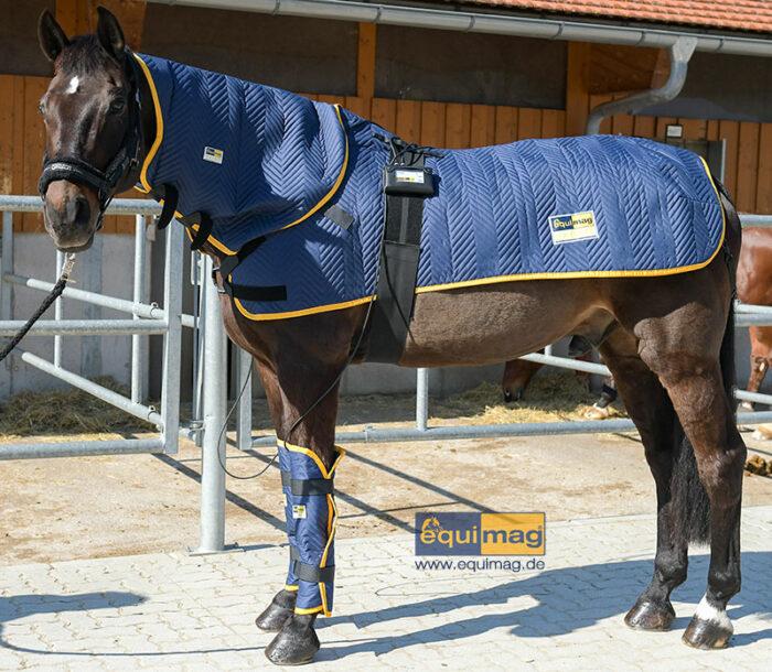 equimag_expert_Magnetfelddecke_pferd