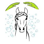 Logo Pferde in Harmonie