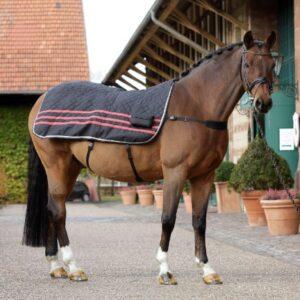 Massagedecke Pferd Horse ThermoTens Pro