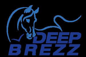 Deep Brezz Logo