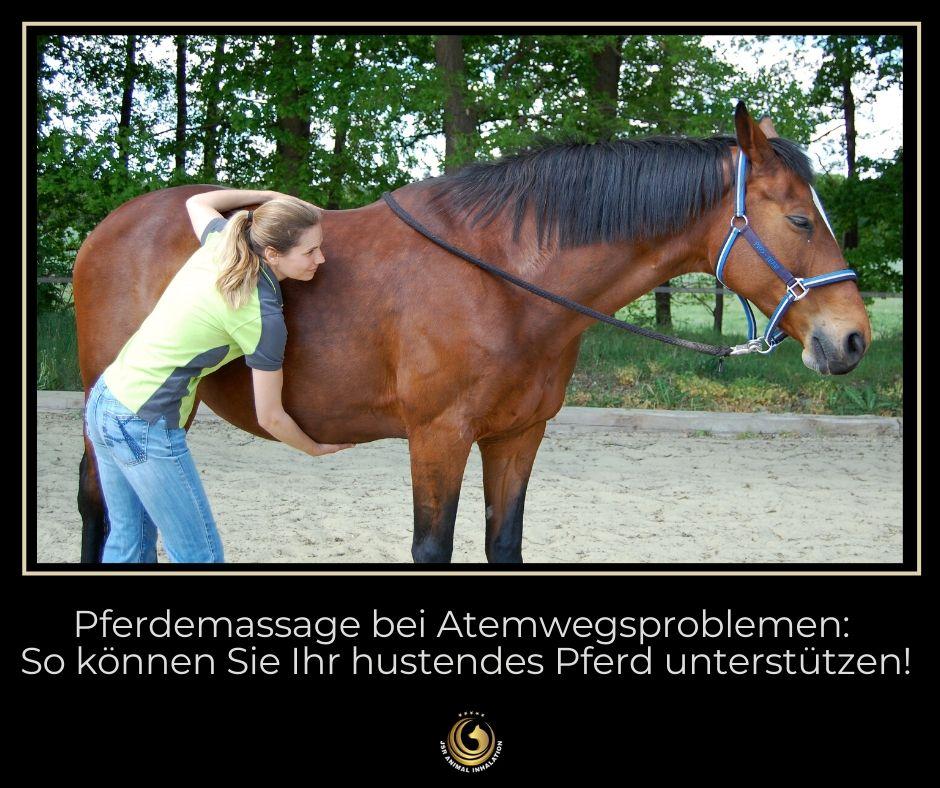 Pferdemassage-bei-Atemwegserkrankungen