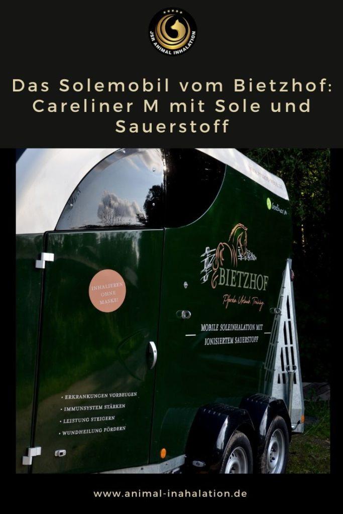 Careliner M Solemobil Bietzhof