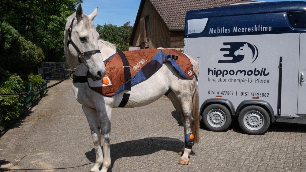 Die Bemer-Decke unterstützt das Angebot der Inhalationstherapie vom hippomobil