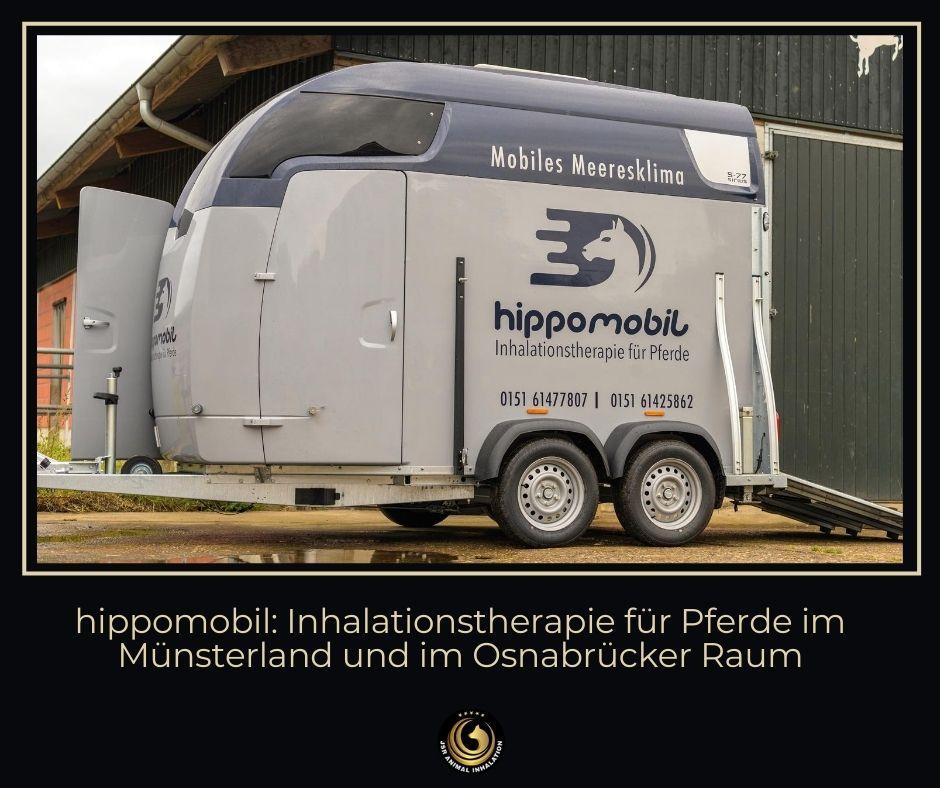 Hippomobil Solemobil in Münster und Osnabrück