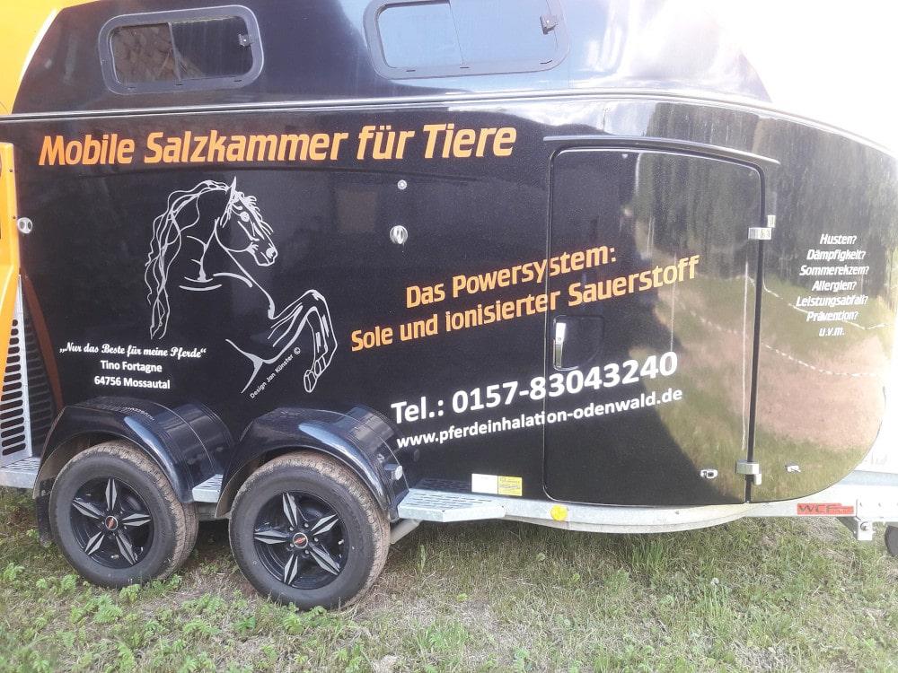 Pferdeinhalation Odenwald -Südhessen