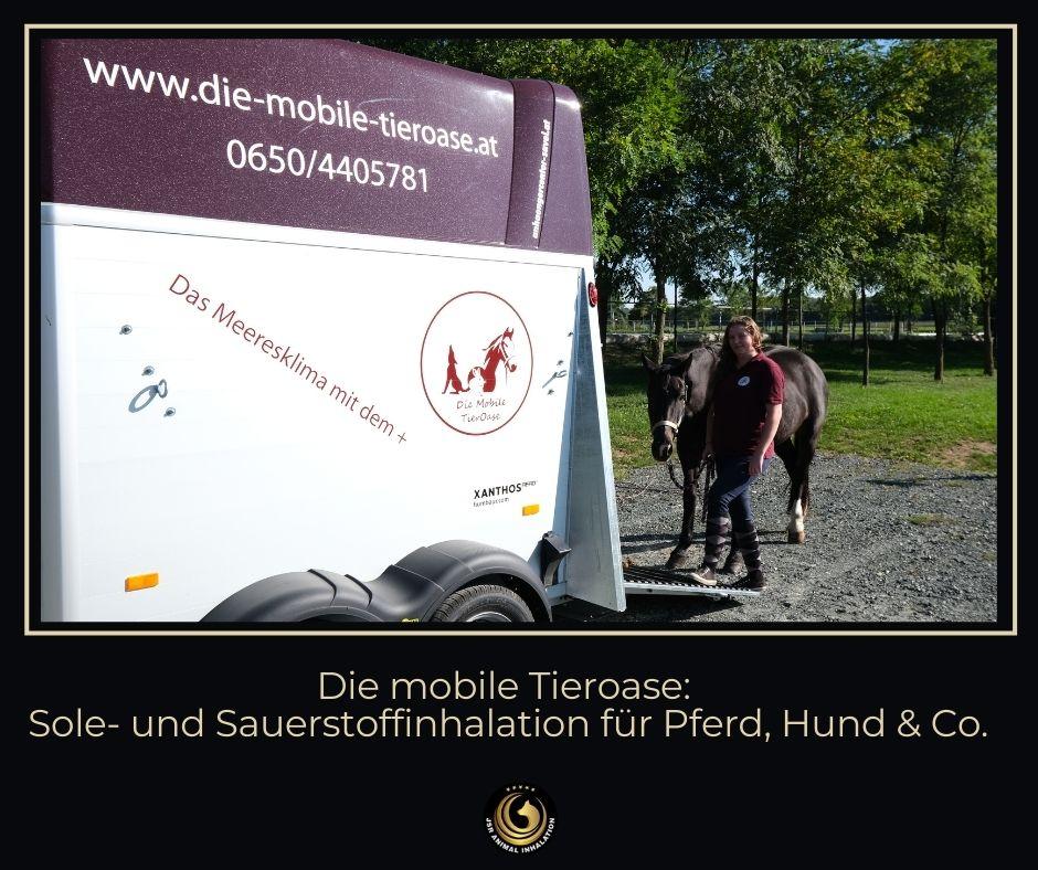 Solemobil Die mobile Tieroase Österreich