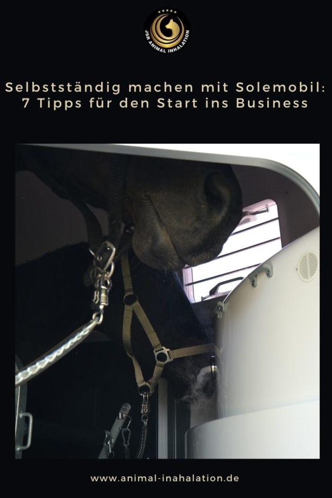 Tipps-fuer-den-Businessaufbau-mit-Solemobil