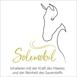 Logo Solemobil Seevetal