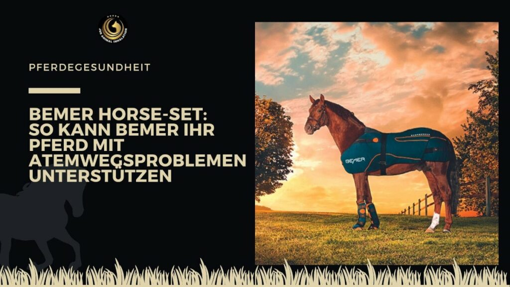 Bemer Horse Set für Pferde mit Atemwegserkrankungen